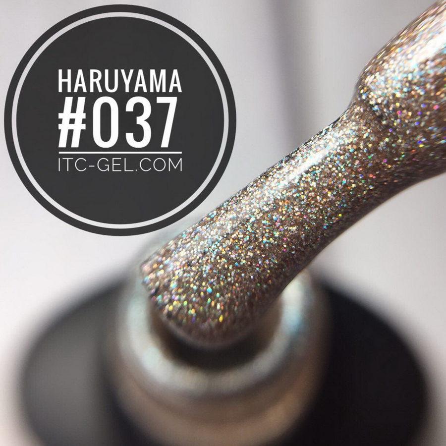 Haruyama laka 037