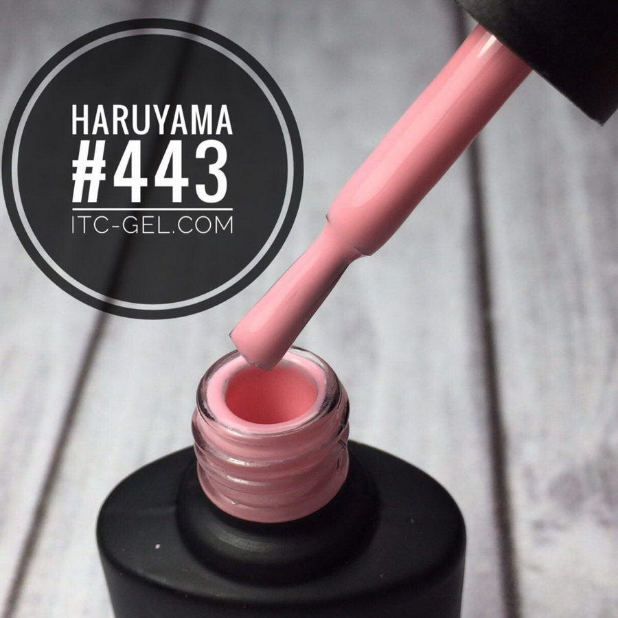 Haruyama laka 443