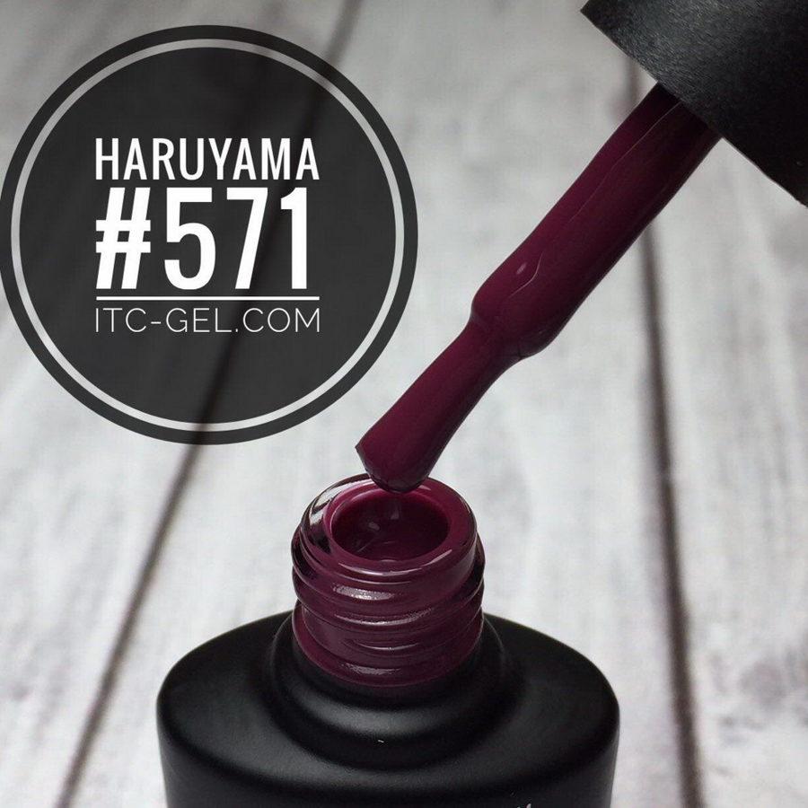 Haruyama laka 571