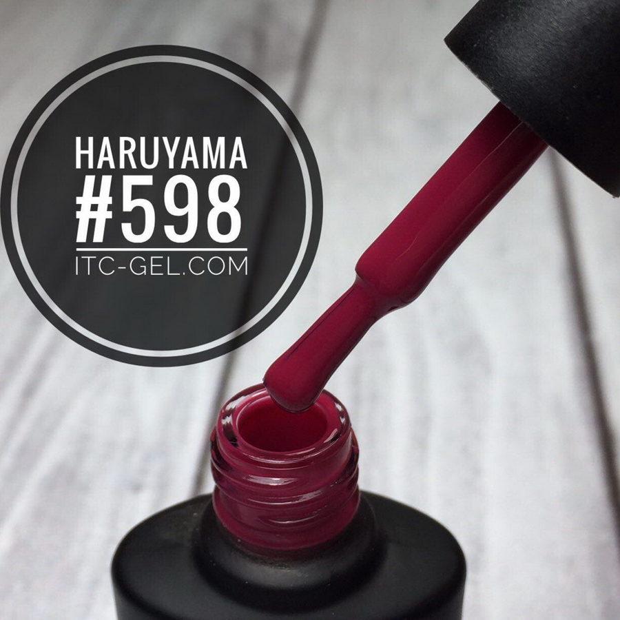 Haruyama laka 598