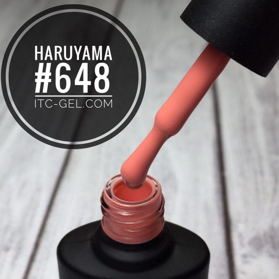 Haruyama laka 648