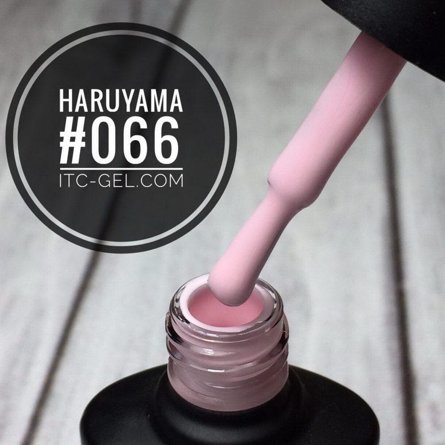 Haruyama laka 066